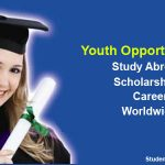 Swedish Institute Scholarships for Global Professionals 2019-2020